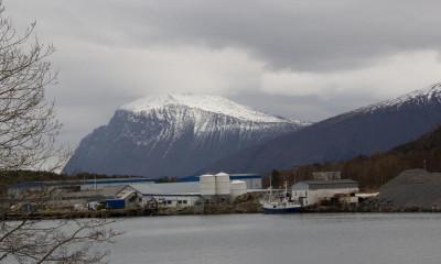 Fiskemottaket ligger vakkert til i Liavaag utenfor Ålesund og er en hjørnesteinsbedrift som sysselsetter totalt rundt 80 mennesker i det vesle lokalsamfunnet.